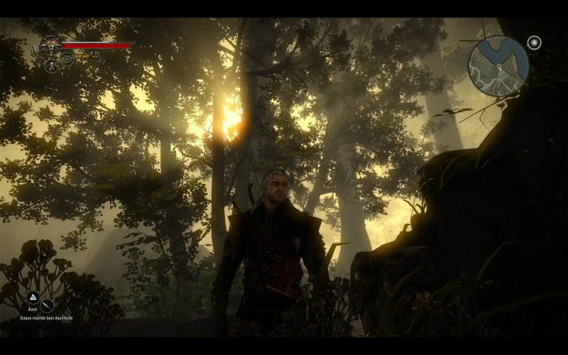 witcher2-foret